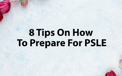 8 Useful Tips To Prepare For The PSLE